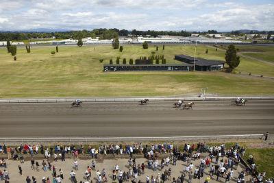 Raceday 7 15 portlandmeadows 0467 tsrwbg