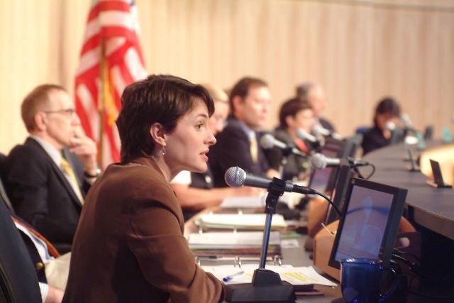 Councilmember heidi wills  2003 gnll9v