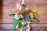 Thumbnail for - Incredible Edibles and Handmade Gardens
