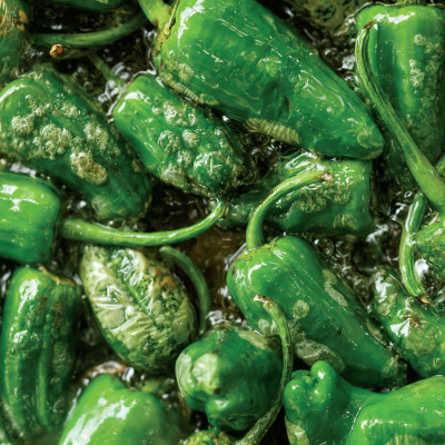0914 padron peppers o2r42w