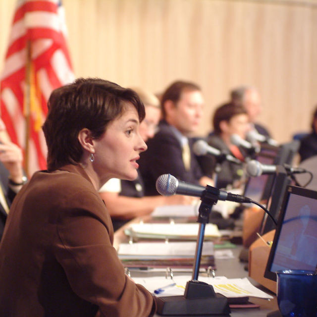 Councilmember heidi wills  2003 gnll9v