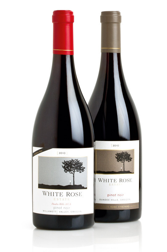 recipe: pinot noir best wine [22]