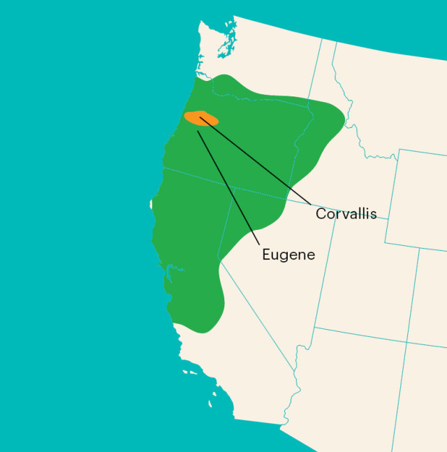 0815 oregon football map w3voia
