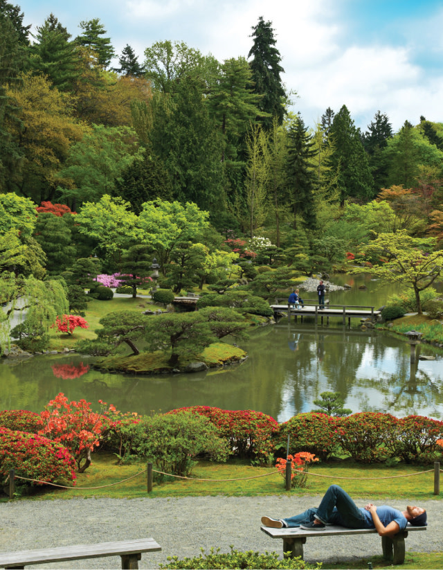 Insider s guide to the seattle icons you thought you knew - University of washington botanic gardens ...