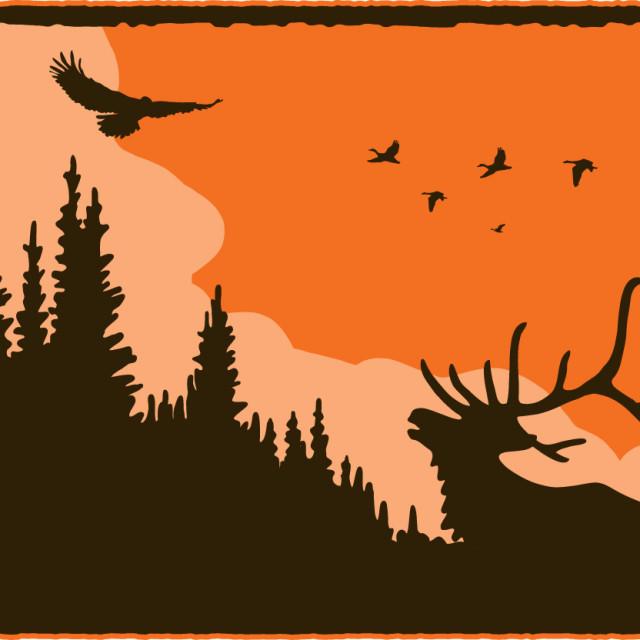 Elk bird tree silhouette orange n6mkni