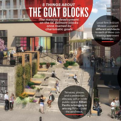 0715 goatblocks ln18pe