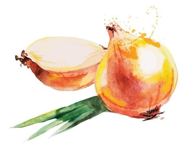 0915 onion e18t0a