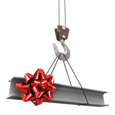 Crane beam with bow lnuzif