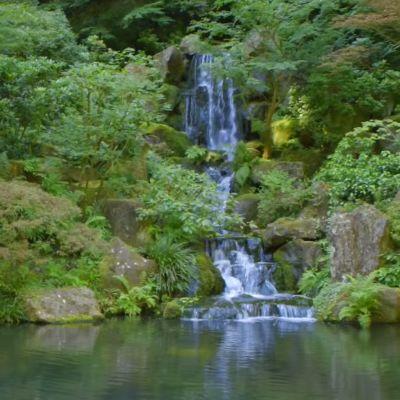 Portland japanese garden expansion announcement dabj83