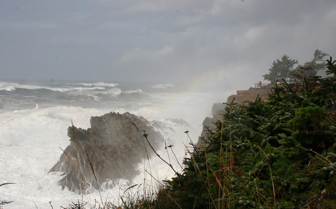 Oregon coast storm joanna bourne m54ok0