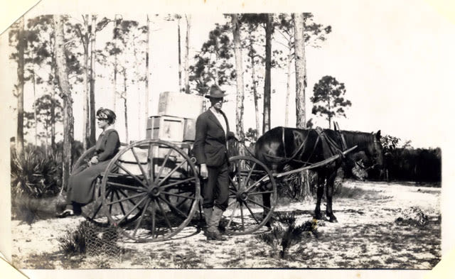 Eagle point camp circa 1916 sjtbr0