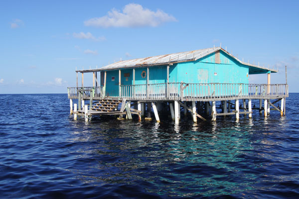 florida houses on the water. bestbluestilthouse600saramag tqcyhq pasco county stilt house florida houses on the water