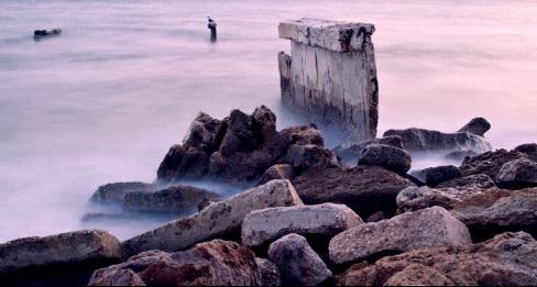 Ha trieu fog rocks sarasota resize xxobnj
