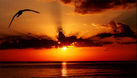 Sarasota sunset a ez6ubw