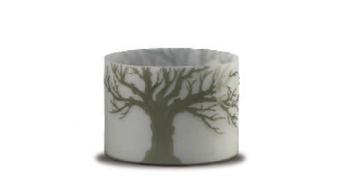 Treebranch jz3kip