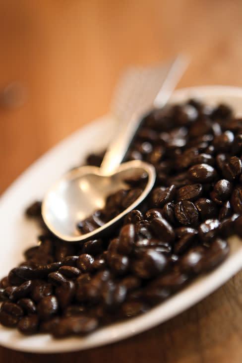 Cupping opener kkoapc