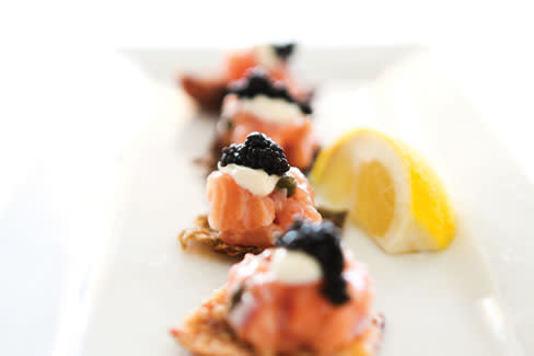 Fw sandbar salmon w94cqz
