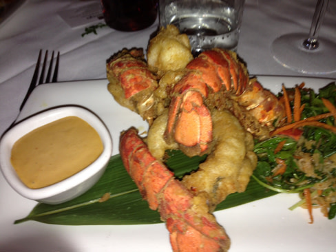 Lobstertemp dmkemz