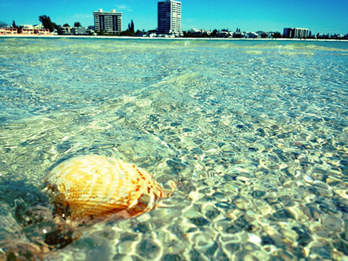 Photo Of The Week Crystal Clear At Siesta Key Beach Sarasota Magazine