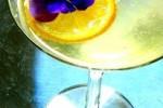 Thumbnail for - The Drunken Botanist Happy Hour