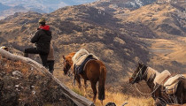 Thumbnail for - Patagonia: In Chile, It's Not Just a Brand