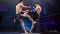 Thumbnail for - Kerry Howley Enters the Octagon