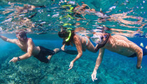 Thumbnail for - An Ashland Native Conquers Snorkeling on Maui