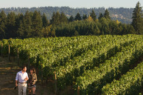 Thumbnail for - Wine Country Weekends