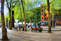 Thumbnail for - A Guide to Six New Bars in Pioneer Square