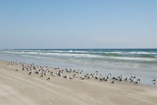 Thumbnail for - Four Texas Coastal Getaways