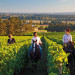 Thumbnail for - Northwest Wine Country Weekends