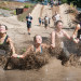 Thumbnail for - Run Through Mud, Fire, and Paintballs at these Crazy Summer Races