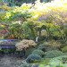Thumbnail for - Slide Show: The Portland Japanese Garden's Fall Colors