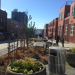 Thumbnail for - Pedestrian Chronicles: Bell Street Park Gets It Right