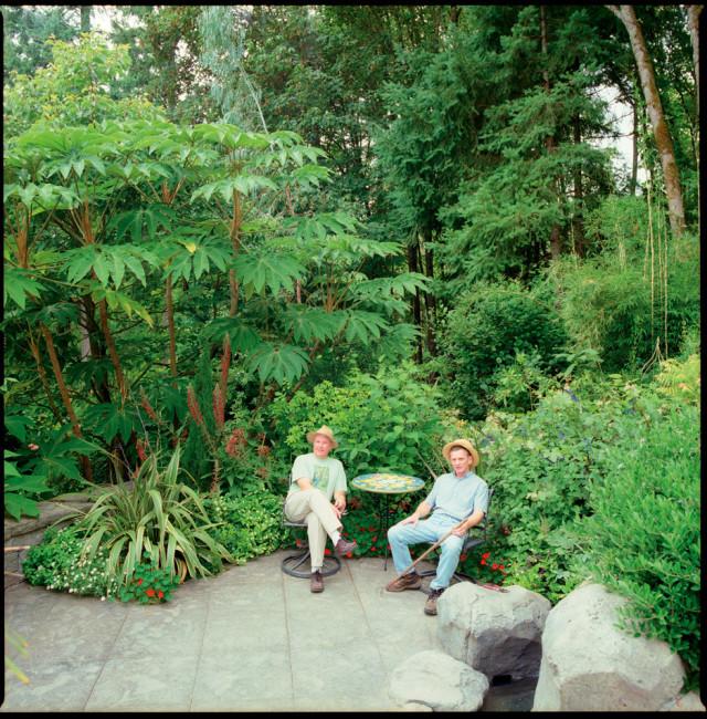 garden forest