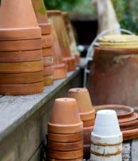 New Series of Workshops at SCCF's Native Landscapes & Garden Center