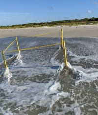 TS Elsa Wipes Away 45 Sea Turtle Nests on Sanibel