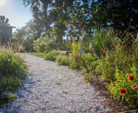 garden-walk-1