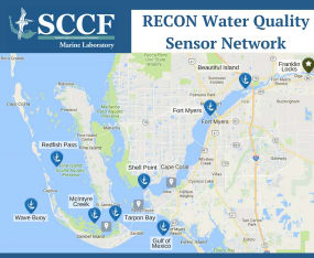 Celebrating the RECON Sensor Network's 10th Anniversary