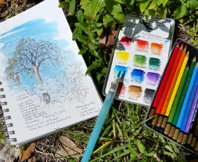 introduction-to-nature-journaling