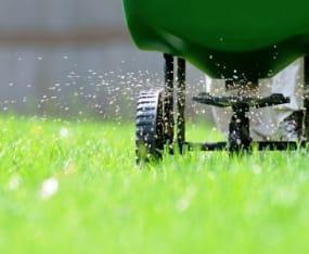 Fertilizer: Take the Summer Off to Prevent Algal Blooms