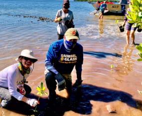 Mangrove Restoration Brings Community Together