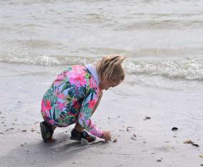 Sanibel Sea School Offers Beachcombing