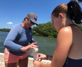 Marine Lab/FGCU Resume Oyster Spat Research