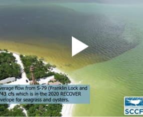 Video Captures Plume off Lighthouse Beach