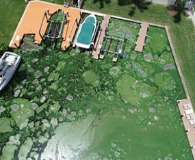 Cape Coral Strengthens Fertilizer Ordinance