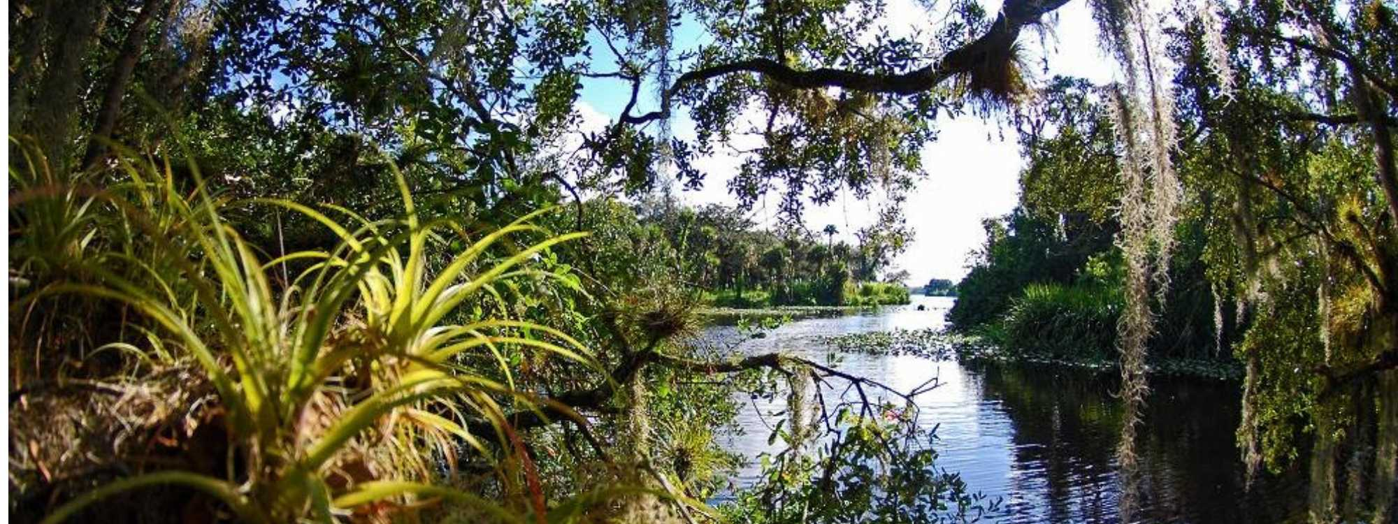 Oxbow and Riverlore Cruises