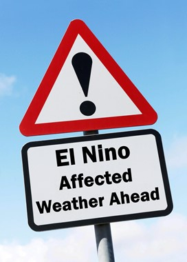 El nino sign