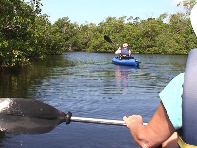 Kayaking at Tarpon Bay