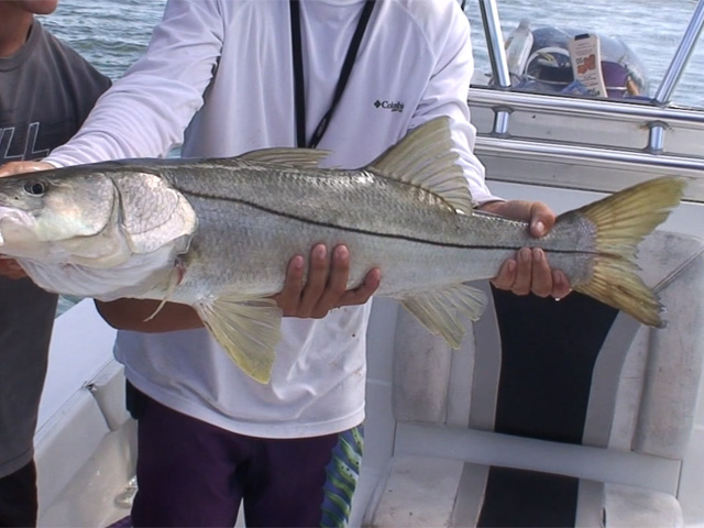 Fishing with Ozzie Fischer
